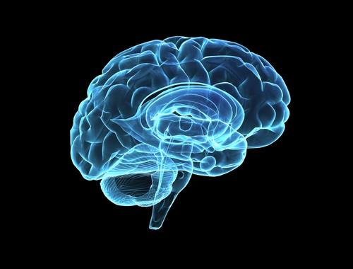 5 způsobů na zvýšení serotoninu (hormonu šťestí) vmozku