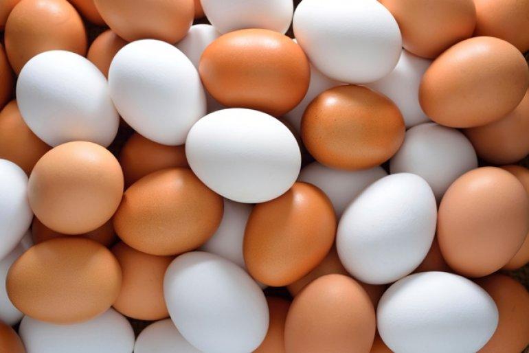 Konečně vtom mám jasno: Jaký je rozdíl mezi bílými a hnědými vajíčky