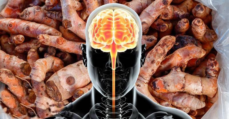 Jak se fyzicky mění váš mozek po konzumaci kurkuminu