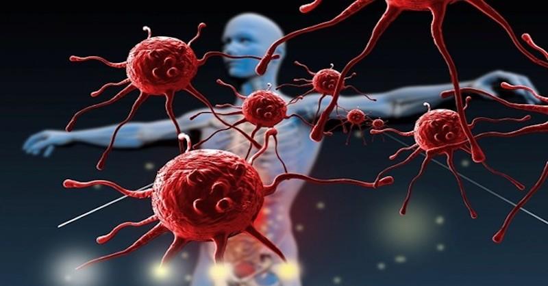 Jak využít enzymy kléčbě zánětů, pročištění krve a posílení imunity